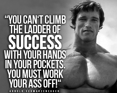 Bodybuilding Quotes Brilliant Arnold Schwarzenegger Bodybuilding Quotes