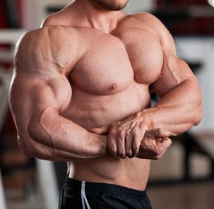 Size and Strength Steroids